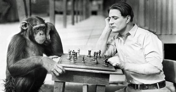Yoga und Gene (1), Schachspeler Affe und Mensch