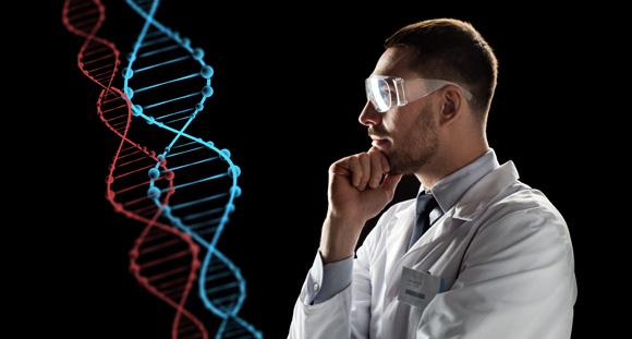 Yoga Augsburg, Gene: Wissenschaftler betrachtet nachdenklich das Modell einer DNA